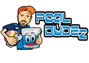 pool dudez new logo